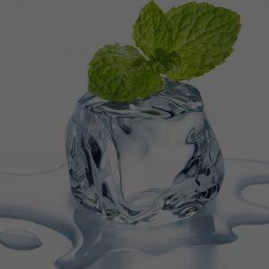 Mint / Menthol Flavors