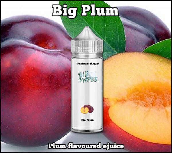 Big Plum e Liquid Flavor ejuice Vape refill
